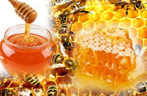More than a sweet: The health advantages of honey
